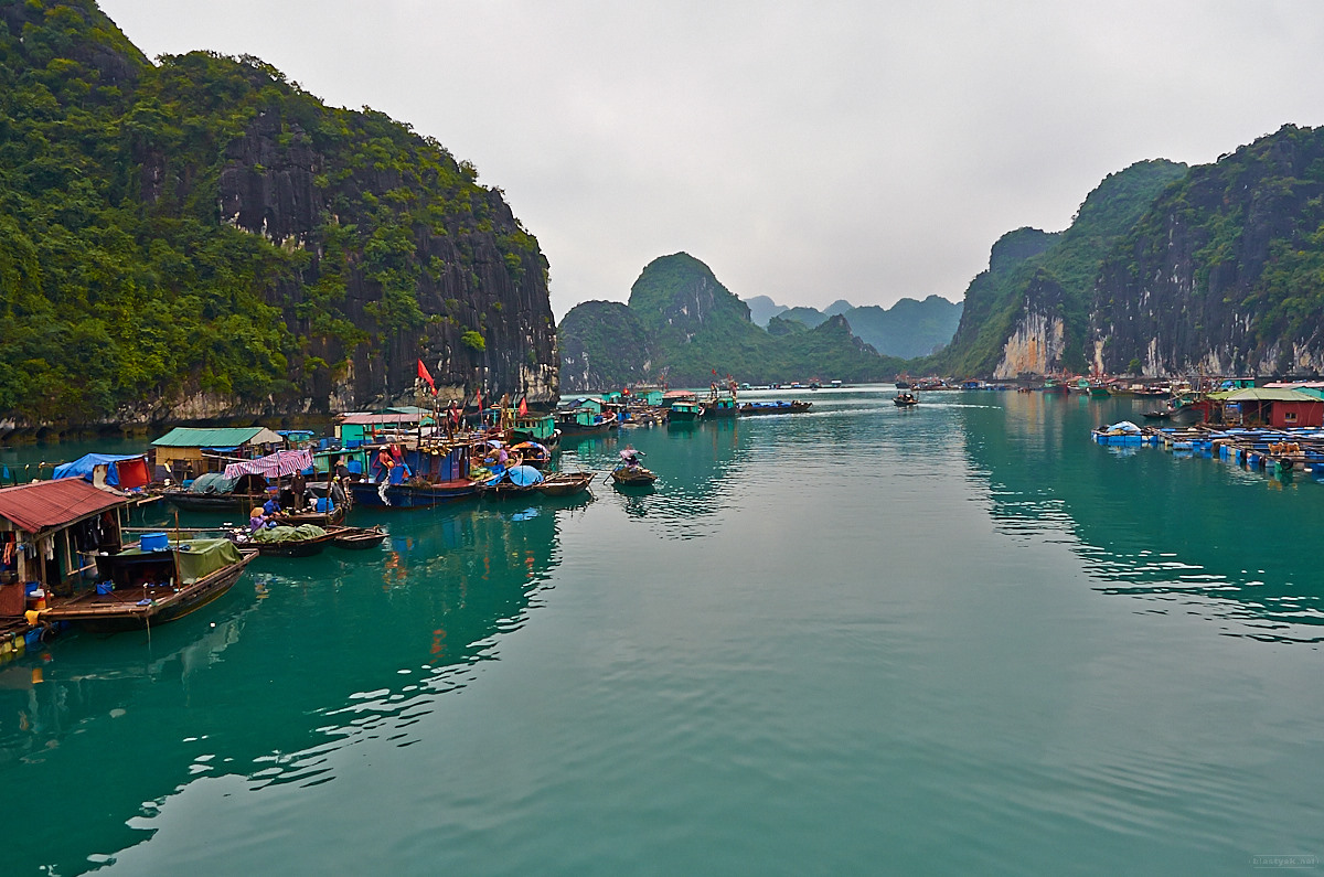 Swimming village within Halong Bay